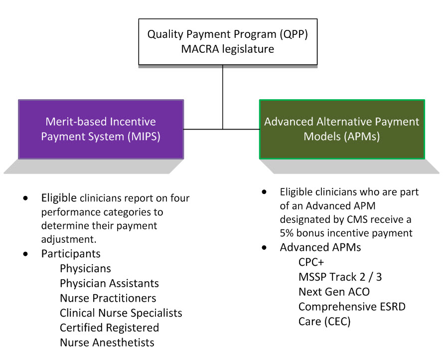 QPP_Overview